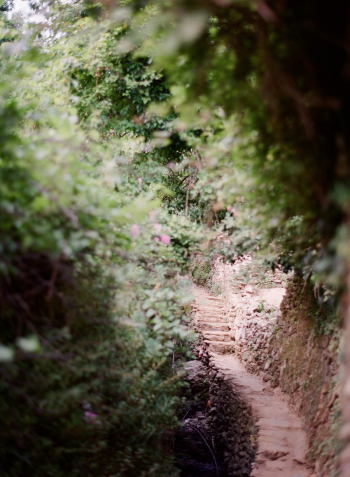 Ligurian Pathway