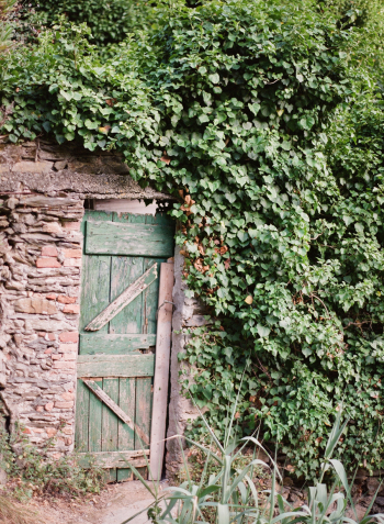 Ligurian Vineyard Secret Door