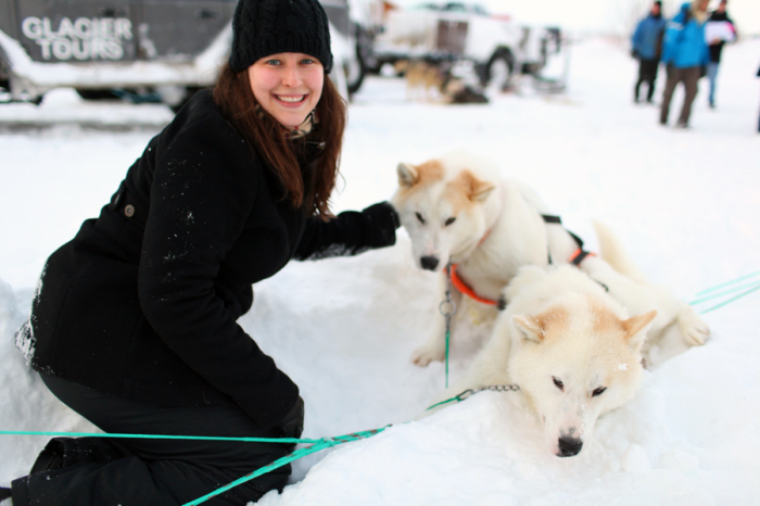 Adorable Sledding Dogs