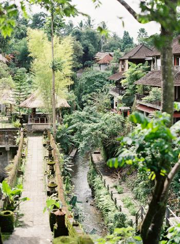 Scenes from Ubud Bali