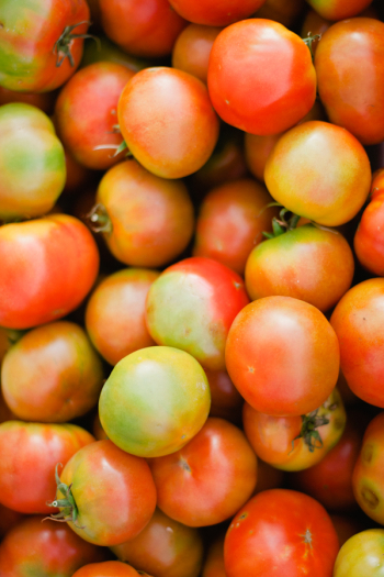 Fresh Produce in Tuscany