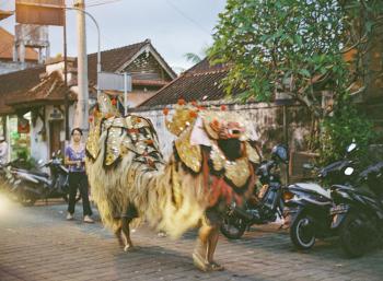Ubud Street Scenes