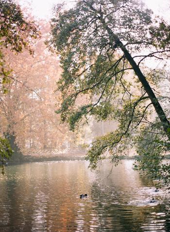 Parco Sempione Lake