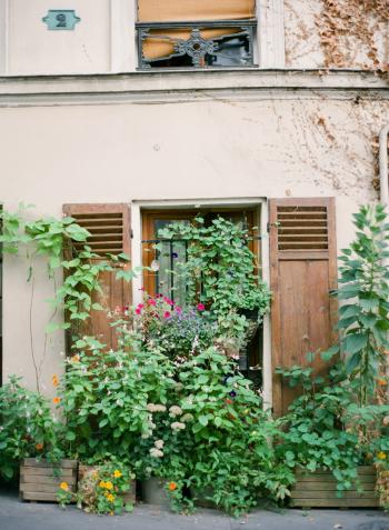 Paris Window Garden
