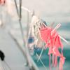 Virgin Islands Sailing Cover