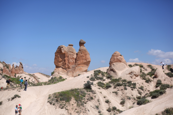 Animal Fairy Chimneys