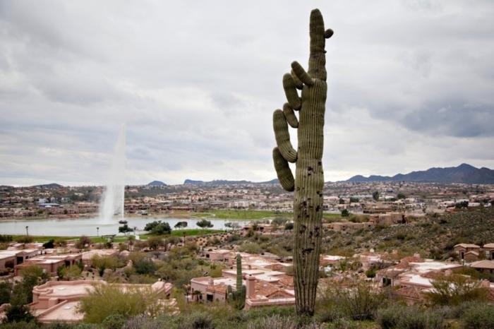 Arizona To California Road Trip Entouriste