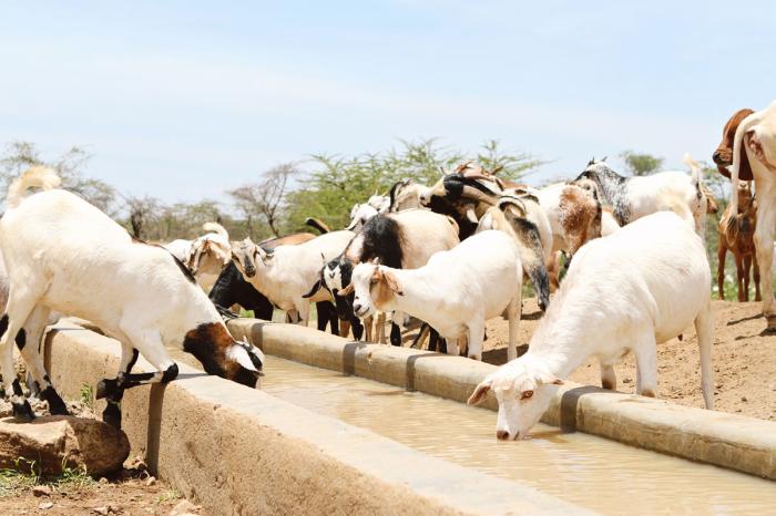 Water Project Ol Lentille