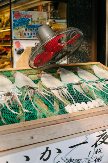 Drying Squid in Hakone