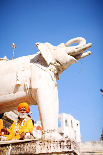 Elephant Statue in Udaipur