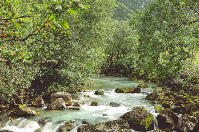 River in Bergen