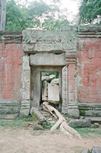Ruins at Ta Prohm Cambodia