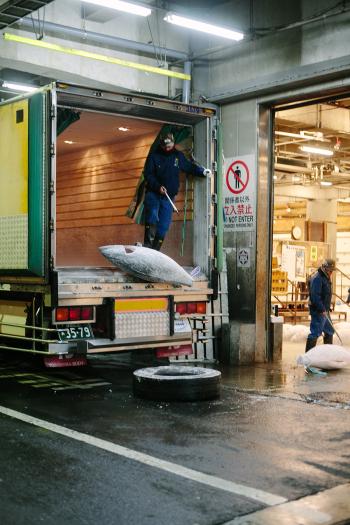 Tsukiji Fish Market Delivery