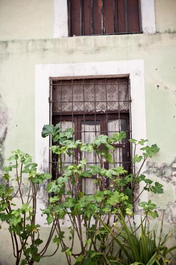 Window in Valladolid