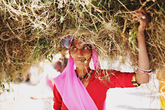 Woman Carrying Brush in Udaipur
