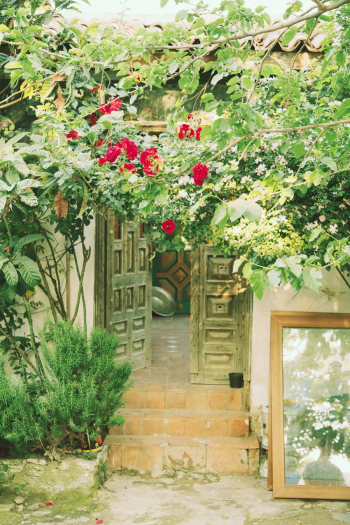 Lush Entryway in Sirince Turkey