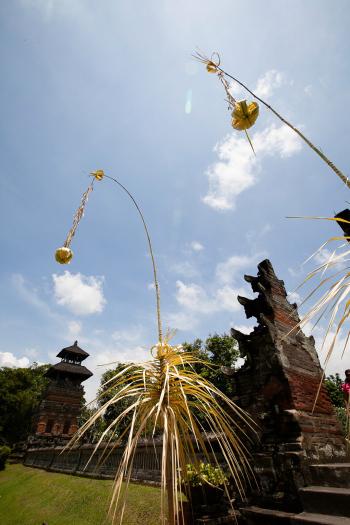 Plants at Pura Taman Ayun Bali