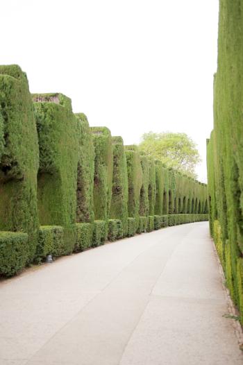 Walkway at the Alhambra in Granada