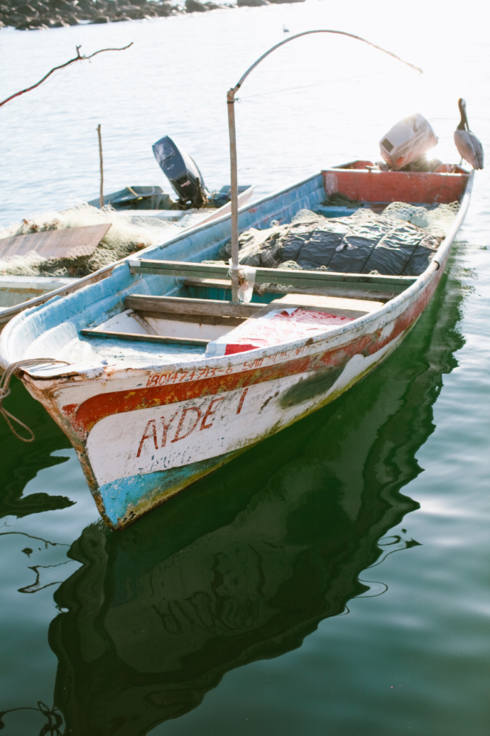 Fishing boat in chacala marina mexico entouriste for Fishing in mexico