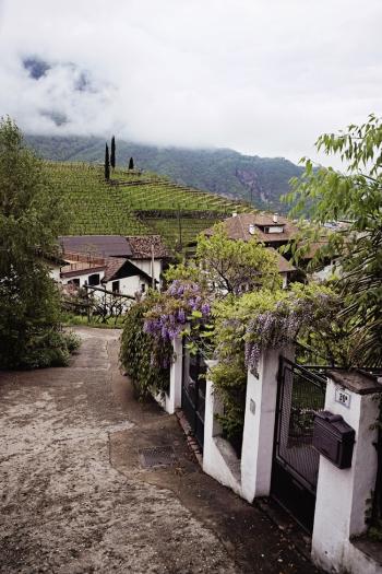 Hillside Homes in Bolzano Italy