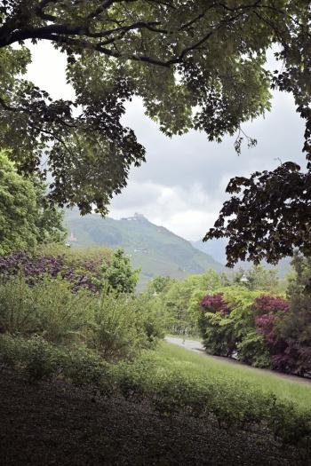 Lush Landscape in Bolzano Italy