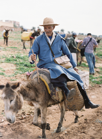 Man Riding Donkey in Morocco