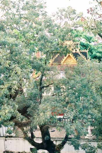 Temple in Vientiane Laos