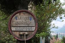 Weingut Plonerhof Winery in Bolzano Italy