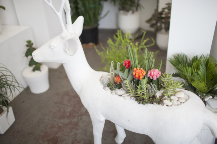 Deer at Plant the Future in Miami