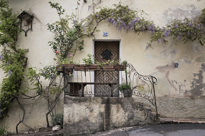 Front Door Wisteria in Bolzano Italy