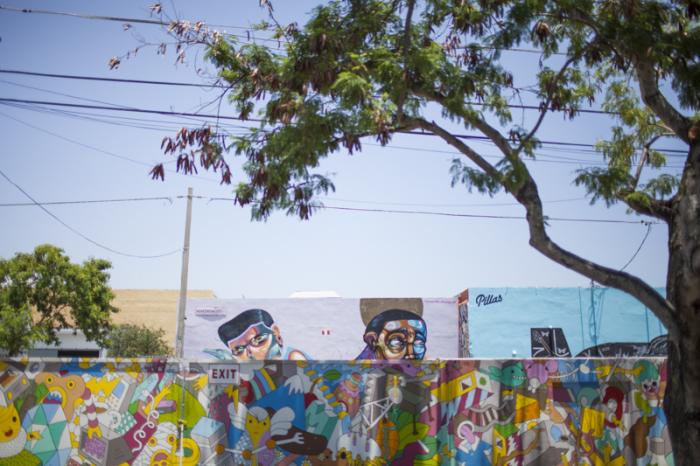 Street Art from Wynwood Arts District