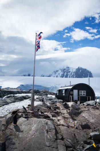 British Flag in Antarctica