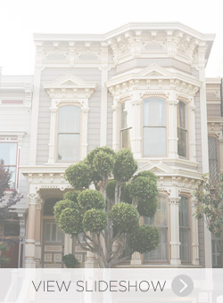 San-Francisco-Local-Guide