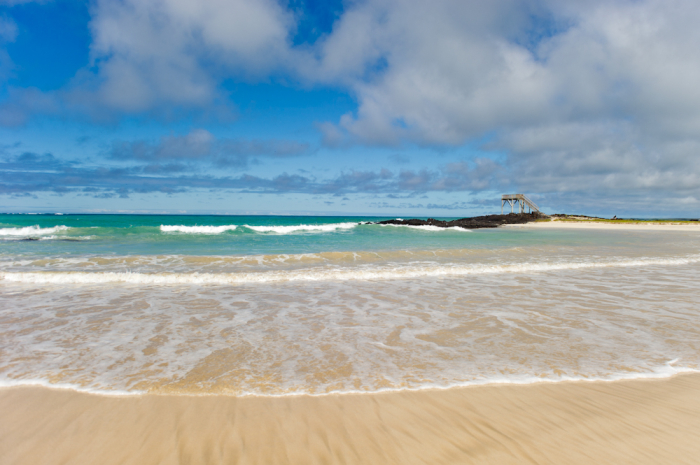 Sandy Shores of the Galapagos