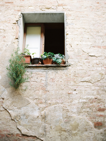 Brick Wall and Potted Plants in Tuscany