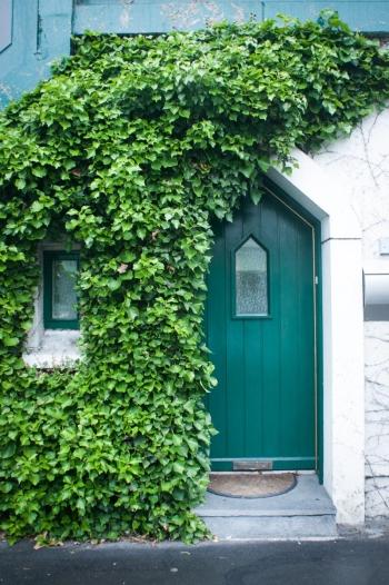Green Door and Creeping Ivy in Connemara Ireland