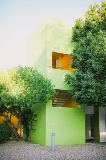Green Wall at the Saguaro Hotel in Scottsdale Arizona