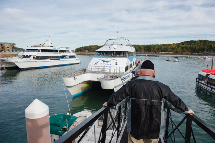 Bar Harbor Whale Watch Company Tour