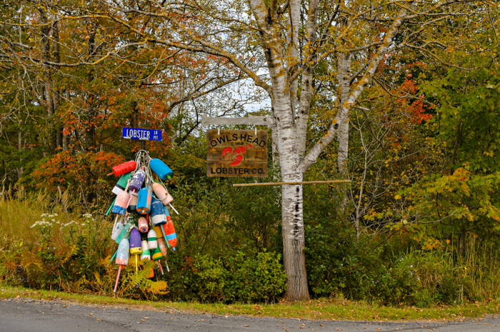 Buoys on the Lobster Lane Road Sign