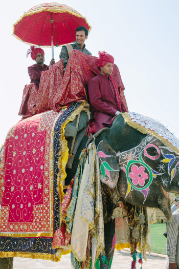 Groom on an Elephant at Suryagarh Palace in India