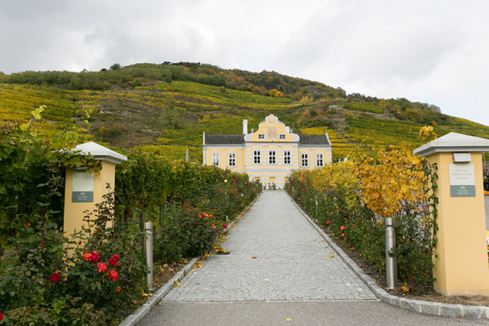 Entrance to Domane Wachau Winery in Wachau Valley Austria