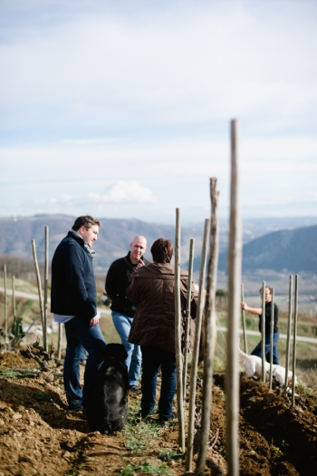 Private Tour of Domaine de Gouye in Rhone Valley France