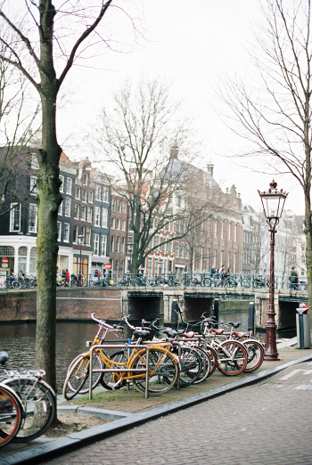 Bicycle Lined Streets of Amsterdam