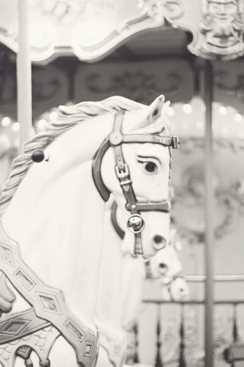 Carousel Horse in Paris France