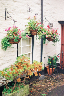 Hanging Baskets in Port Isaac England