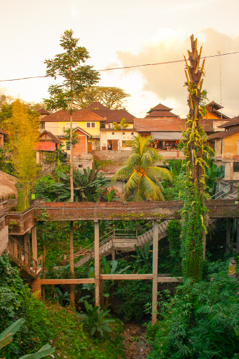 Homes in Ubud Bali