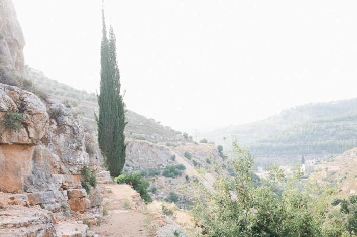 Natural Landscape of Battir Palestine