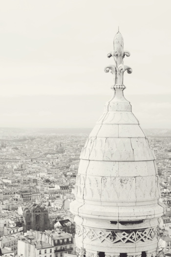 View from the Sacre Coeur in Paris